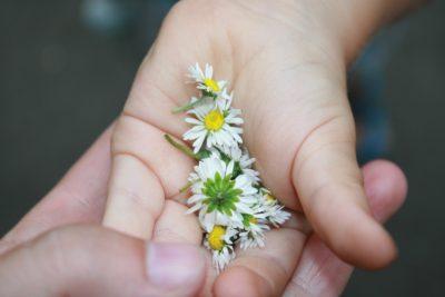 В руке цветов