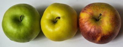фрукты в ряд
